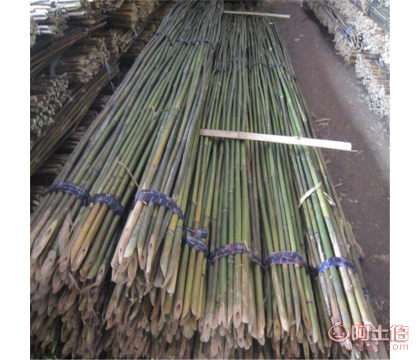 温州竹杆细竹竿竹子架竹制品产地发货|苦竹批发商电话