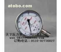 不锈钢超高压压力表系列