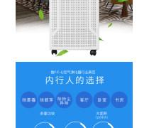 广州负离子空气净化器批发商#价格优惠