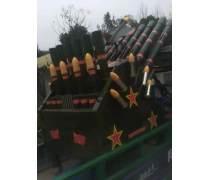 电子礼炮|福建电子礼炮