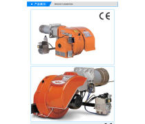 低氮燃烧器_泰安低氮燃烧器