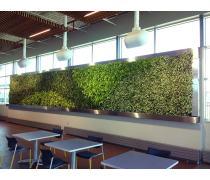 精品生态立体绿化墙垂直绿化真植物墙室内浪漫绿植墙