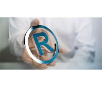 国内商标注册办理流程详解