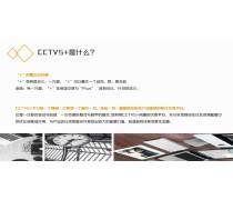 2019年CCTV5+体育频道广告播出费用多少钱?