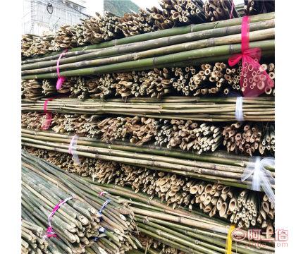 枸杞绑竿 3米长2公分粗 绑扶枸杞树苗专用竹竿