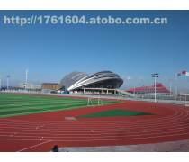 内蒙古塑胶跑道施工专家