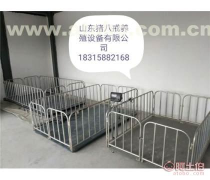 九江养猪饮水、山东猪八戒、养猪设备企业猪场广州设备图片