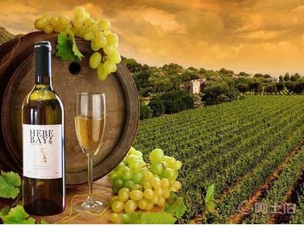【意大利米兰到成都进口红酒中欧铁路货运铁路