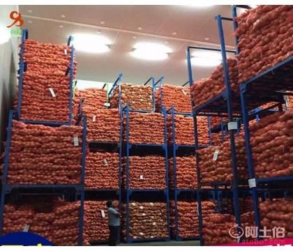 冷库堆垛架|广东冷库堆垛架厂家
